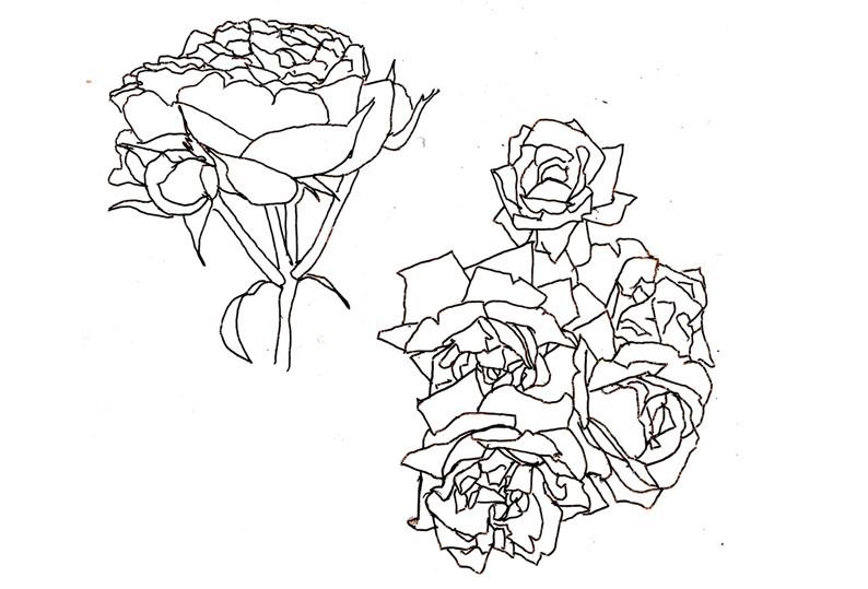 Roser - 4 og 2_1