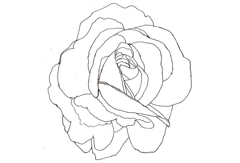Stor Rose s-h-streg_1